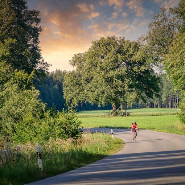 Fahrradsommer – Sparangebot