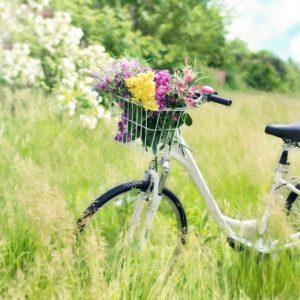 Radfahren und Routen